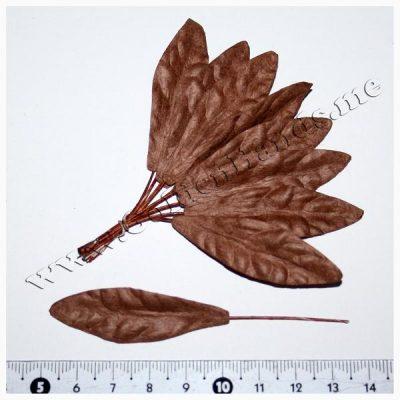 Лист большой коричневый