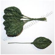 Лист розы тёмно зелёный