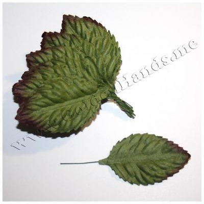 Лист зелёный с бордовым кончиком 60х35 мм