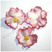 АЗАЛИЯ бело-розовая 4 см