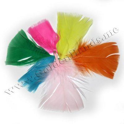 Перо подстриженное разноцветное 5-9 см