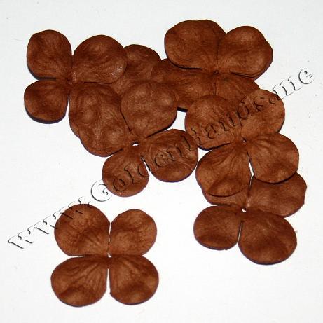 ГОРТЕНЗИЯ 2,5 см какао