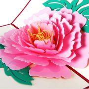 3D POP-UP открытка ПИОН розовый