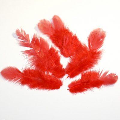 Перо красное, 3 шт