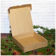Коробка подарочная новогодняя 16,5*17,5*4 см №1